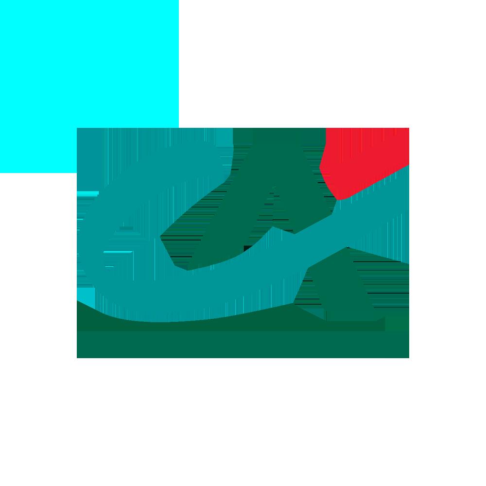 Logo PNG détouré CA Crédit Agricole